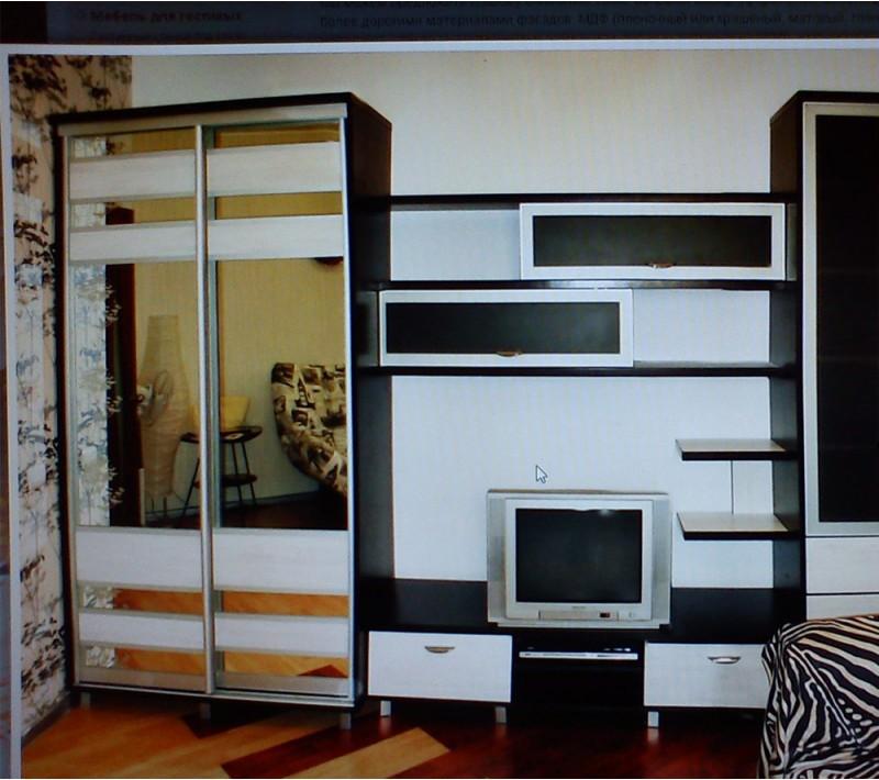 Шкаф купе стенка в гостиную